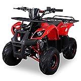 Kinder Quad S-8 Farmer 125 cc Motor Miniquad 125 ccm rot Toronto