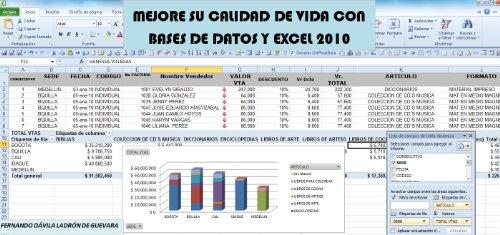 MEJORE SU CALIDAD DE VIDA CON LAS BASES DE DATOS Y EXCEL 2010 (GESTION DE INFORMACION) (Spanish Edition)