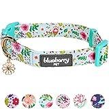 Blueberry Pet Frühlingsduft Inspiriertes Gartenbalsam Hundehalsband in Mintgrün, M, Hals 37cm-50cm, Verstellbare Halsbänder für Hunde