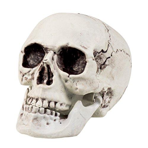 kopf Maxilla mit beweglichen Backen, ca. 17 x 15 cm (Schädel-kiefer-maske)