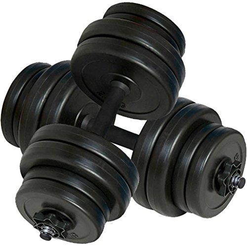 vidaXL Set de Pesas 2 Mancuernas 30kg Entrenamiento Fuerza Fitness Musculación