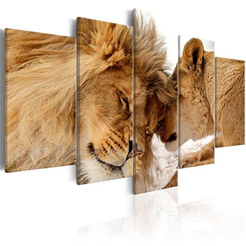 murando Quadro 200x100 cm 5 Pezzi Stampa su Tela in TNT XXL Immagini Moderni Murale Fotografia Grafica Decorazione da Parete Leone Animale Africa Amore g-B-0034-b-m 200x100 cm