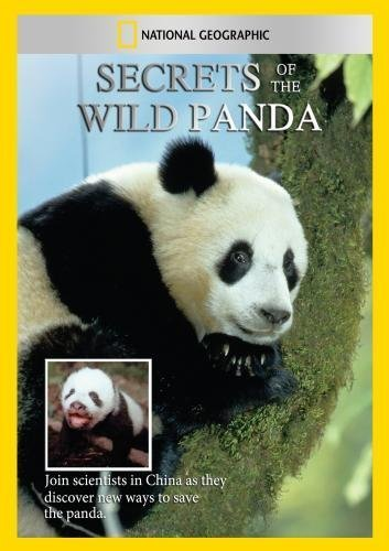 secrets-of-the-wild-panda-by-mark-stouffer
