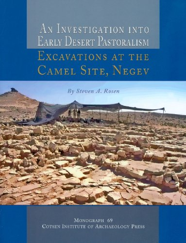 INVESTIGATION INTO EARLY DESERT PAS PB (Monograph, Band 69) -