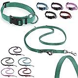 CarlCurt Classic-Line Hundehalsband & Hundeleine im Set, aus strapazierfähigem Nylon, S 30-45cm & S 1,90m, grün
