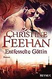 Entfesselte Göttin: Die Leopardenmenschen-Saga 7 - Roman