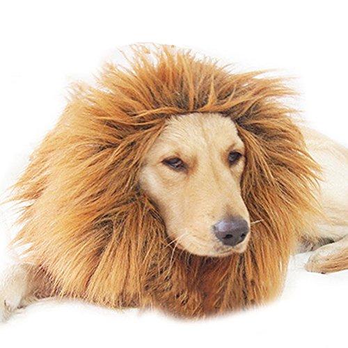 Lucky Will Löwe Mähne Perücke für Hunde Liebenswürdig PET Hat Katze Hund Kleid bis mit Ohren Funny Katze Hund Little Puppy Kostüm