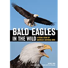 Bald Eagles in the Wild ; A Visual Essay of America's National Bird