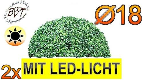 2X Premium Buchs, Echtbaum-Optik, kleine Buchs, Buchsbaum-Halbkugel/Halbschale Durchmesser 18 cm 180 mm grün dunkelgrün, robust und wetterfest