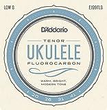 Die besten D'Addario Ukulele Strings - Daddario EJ99TLG Tenor Low G Pro-Arte Carbon Ukulele Bewertungen