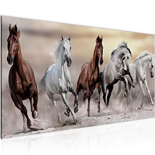 Bilder Pferde Wandbild 100 x 40 cm Vlies - Leinwand Bild XXL Format Wandbilder Wohnzimmer Wohnung Deko Kunstdrucke Braun 1 Teilig - Made IN Germany - Fertig zum Aufhängen 014112a