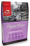 Orijen Puppy Large Breed Whole Prey - 6 kg