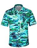 APTRO Herren Hemd Hawaiihemd Freizeit Hemd Kurzarm Urlaub Hemd Reise Shirt HW010 L