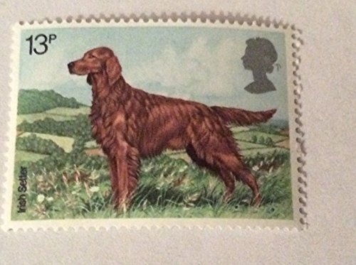 Irischer Siedler 13p. 7. Februar 1979 Neuzustand GB Briefmarke ungebraucht MNH