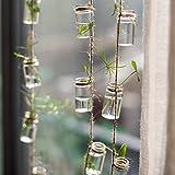 Candora Klar Zum Aufhängen Glas Vase Flasche String Pflanze Blumen Zum Aufhängen Terrarium Container Continental Hydrokultur mit 3Seil Dekoration Anhänger Vorhang Windbell