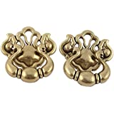 Indianshelf Handmade Brass Golden Floral Drawer/Dresser Knobs -2 Piece (RAK-85)