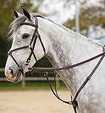 Condados Salisbury 3 punto petos Varios colores Australian Nut Talla:Pony