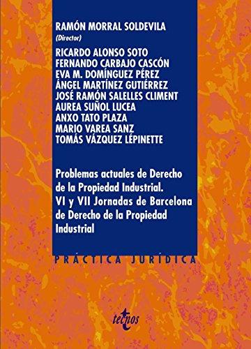 Problemas actuales de Derecho de la Propiedad Industrial.: VI y VII Jornadas de Barcelona de Derecho de la Propiedad Industrial (Derecho - Práctica Jurídica)