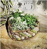 Grabschmuck Herz Pflanzherz aus Birkenholz zum Bepflanzen Pflanzschale Herz ALS Gartendeko Terrassendeko oder Grabschuck
