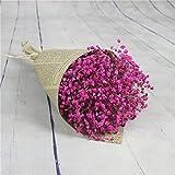 HUHU833 Natürliche getrocknete Blume himmel sterne floral Blumenstrauß Blume für Dekoration Wohnaccessoires & Deko (Rose rot)