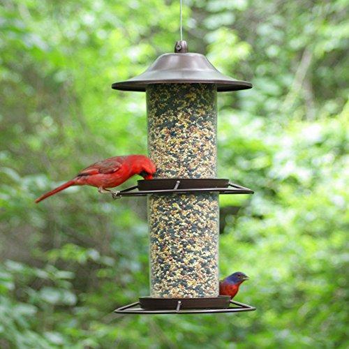 Panorama-Vogelfutterspender, 2 in 1 Futterspender, Opus 325S