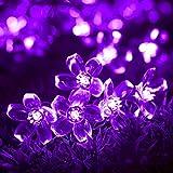 InnooTech 50er LED Solar Lichterkette Blumen Garten Außen Lila 5 Meter