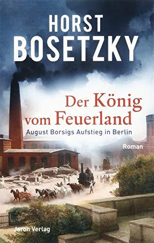 Der König vom Feuerland: August Borsigs Aufstieg in Berlin. Roman