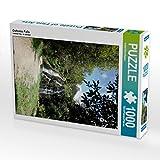 CALVENDO Puzzle Owharoa Falls 1000 Teile Lege-Größe 48 x 64 cm Foto-Puzzle Bild von Isabel Bürschgens