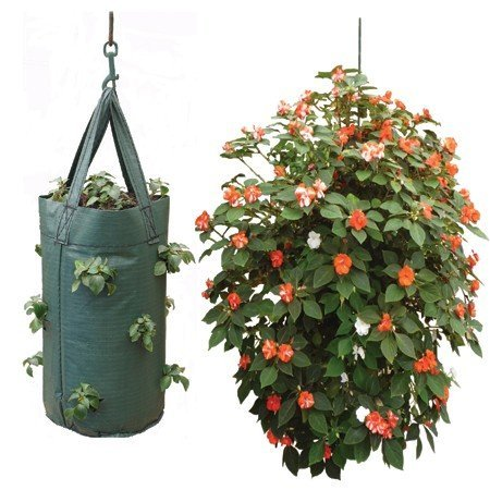 nutleys-hanging-tomato-growbag