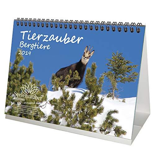 Tierzauber Bergtiere · DIN A5 · Premium Tischkalender/Kalender 2019 · Steinbock · Murmeltier · Schneehase · Steinadler · Braunbär · Gipfel · Gebirge · Natur · Tiere · Wildnis · Edition Seelenzauber