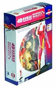 Puzzle 46 pièces - Anatomie des muscles et du squelette humain (instructions en anglais, allemand, espagnol)