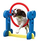 Rosewood Small Dog Agility Hoop