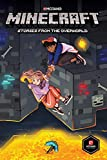 Minecraft: Stories from the Overworld (Graphic Novel) (English Edition)