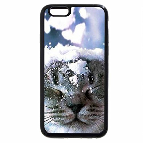 iPhone 6S / iPhone 6 Case (Black) It Is Winter