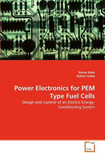 Power Electronics for Pem Type Fuel Cells