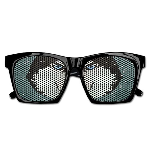 EELKKO Mesh Sunglasses Sports Polarized, Its Winter Time Retro Poster Dog Face Falling Snowflakes,Fun Props Party Favors Gift Unisex