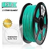 PLA Filament Grass Green, 3D Hero PLA Filament 1.75mm,PLA 3D Printer Filament, Dimensional Accuracy +/- 0.02 mm, 2.2 LBS(1KG),1.75mm Filament, Bonus with 5M PCL Nozzle Cleaning Filament