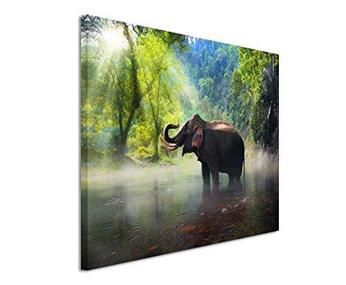 Paul Sinus Art XXL Fotoleinwand 120x80cm Tierfotografie - Elefant, Kanchanaburi Provinz, Thailand auf Leinwand Exklusives Wandbild Moderne Fotografie für Ihre Wand in Vielen Größen -