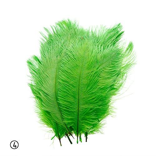 calistous 10 Schönes natürliches Strauß Federn Colorful Party Decor 25,4-30,5 cm/25-30 cm grün ...
