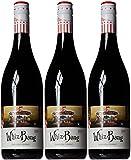 Angove Family Winemakers Whiz Bang Shiraz Wine 2014 75 cl (Case of 3)