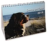Senta on Tour 2019 - Fotokalender DIN A5