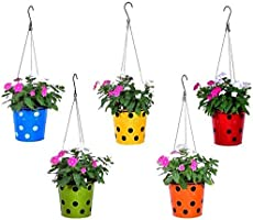 Trust Basket Dotted Round Planter with Hanging Wire Rope (Multicolour)