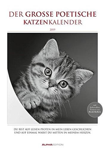 Der große poetische Katzenkalender 2019 - Literarischer Bildkalender A3 - mit Zitaten - schwarz/weiß - Tierkalender