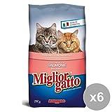 Miglior Gatto Set 6 2 Kg.Secco Salmone Cibo Per Gatti