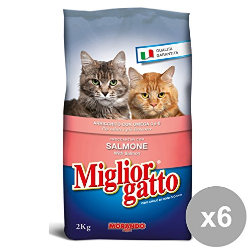 Set 6 MIGLIOR GATTO 2 KG.Secco Salmone Cibo per gatti