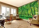 great-art Fototapete Bäume - 336 x 238 cm 8-teiliges Wandbild Wald Lichtung Wandtapete Tapete