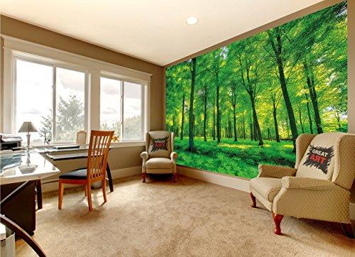 GREAT ART Mural De Pared - Árboles - Naturaleza Paisaje Puro Bosque Claro Relajación De Verano Planta De Sol Flora Bosque Helechos Rama Foto Tapiz Y Decoración (336 x 238 cm)