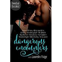 Dangerous Encounters: Twelve Book Boxed Set (English Edition)