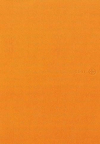 ES journal 2014 ES11 Orange (A5 vertical formule + Note) (japan import)