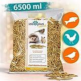Ida Plus - Edel Mehlwürmer getrocknet - 6500 ML - Insekten Snack für Hühner, Igel, Hamster, Teichfische und Reptilien - Vogelfutter für Wildvögel - Naturprodukt ohne Zusatzstoffe - Wildvogelfutter